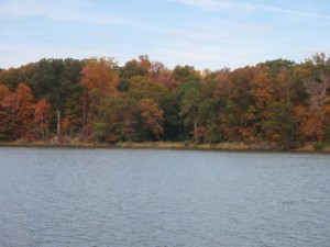 Herfstkleuren_Wye_River