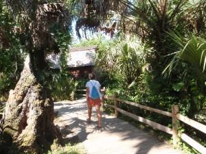 Boardwalk_en_watermill