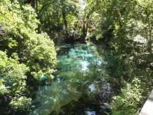 Juniper_Creek